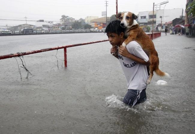 Un enfant protège son chien pour traverser les eaux après la mousson aux Philippines