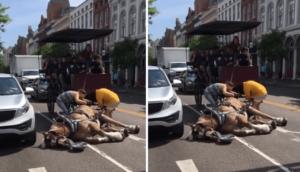 Ce cheval s'est effondré à cause de la chaleur et le fait de tirer une charrette avec 17 personnes dedans!