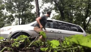 Elle tente de faire sortir un ours qui s'est enfermé dans sa voiture