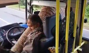 Un éléphant arrête un bus pour voler des bananes