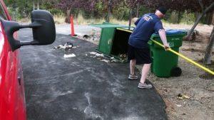 Ils sauvent trois oursons pris au piège dans une poubelle