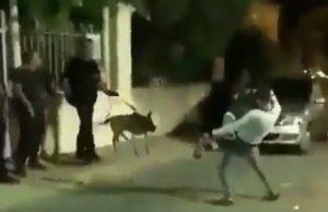 Seine-Saint-Denis Il provoque des policiers et ce fait vite calmer !