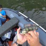 Ce jeune pêcheur fait tomber son iPad dans le lac pendant que papa prend une photo
