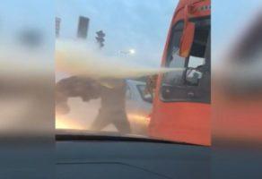 Un conducteur de bus projette un automobiliste avec un extincteur