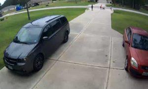 Un voisin risque sa vie lors d'une attaque de pitbull pour sauver un enfant