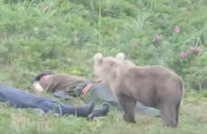 Un ourson curieux surprend deux pêcheurs endormis