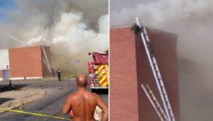 Les pompiers utilisent des échelles pour sauver des ratons laveurs piégés dans un incendie