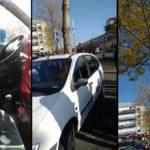 Un arbre a poussé au milieu d'une voiture à Nantes