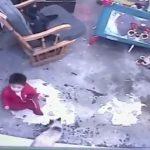 Un chat héros passe à l'action pour empêcher un bébé de tomber dans les escaliers