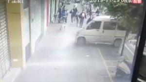 Un automobiliste a été pris en flagrant délit en train de voler un chien sur un trottoir
