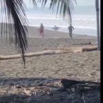 La police ouvre le feu sur un surfeur qui ne respecte pas le confinement