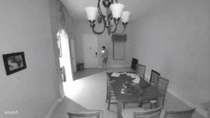 Un chat déclenche le système d'alarme en pleine nuit