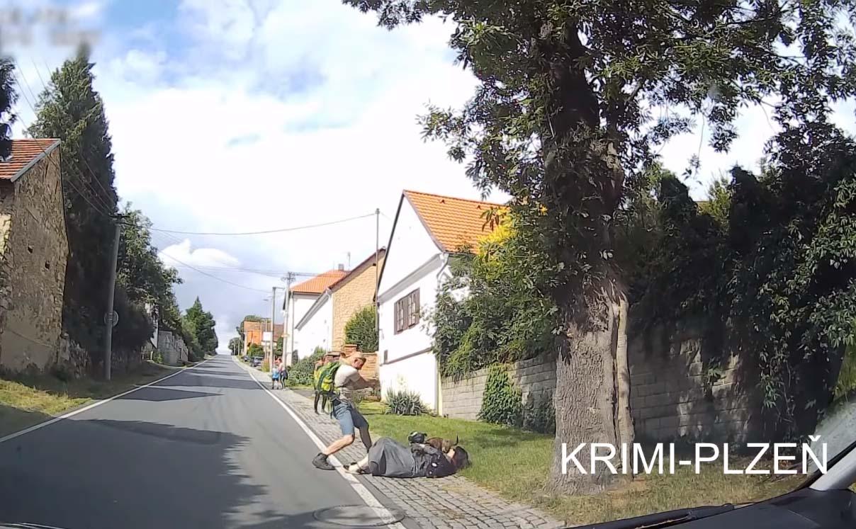 Un policier tire un coup de feu pour stopper un chien agressif