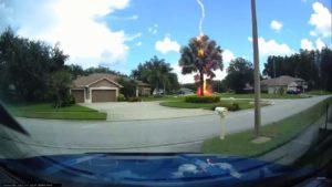 Un éclair rare et incroyable frappe un arbre en plein jour