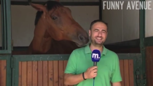Ce reporter rate son direct à cause d'un cheval