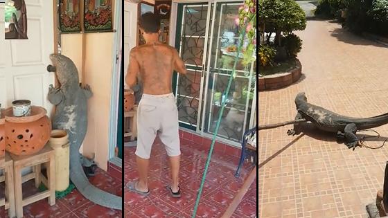 Un lézard monstre agrippé sur la porte d'entrée d'une maison