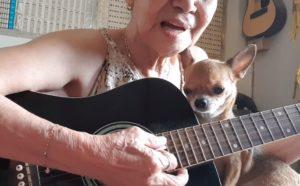 Une belle chanson met en vedette le chihuahua