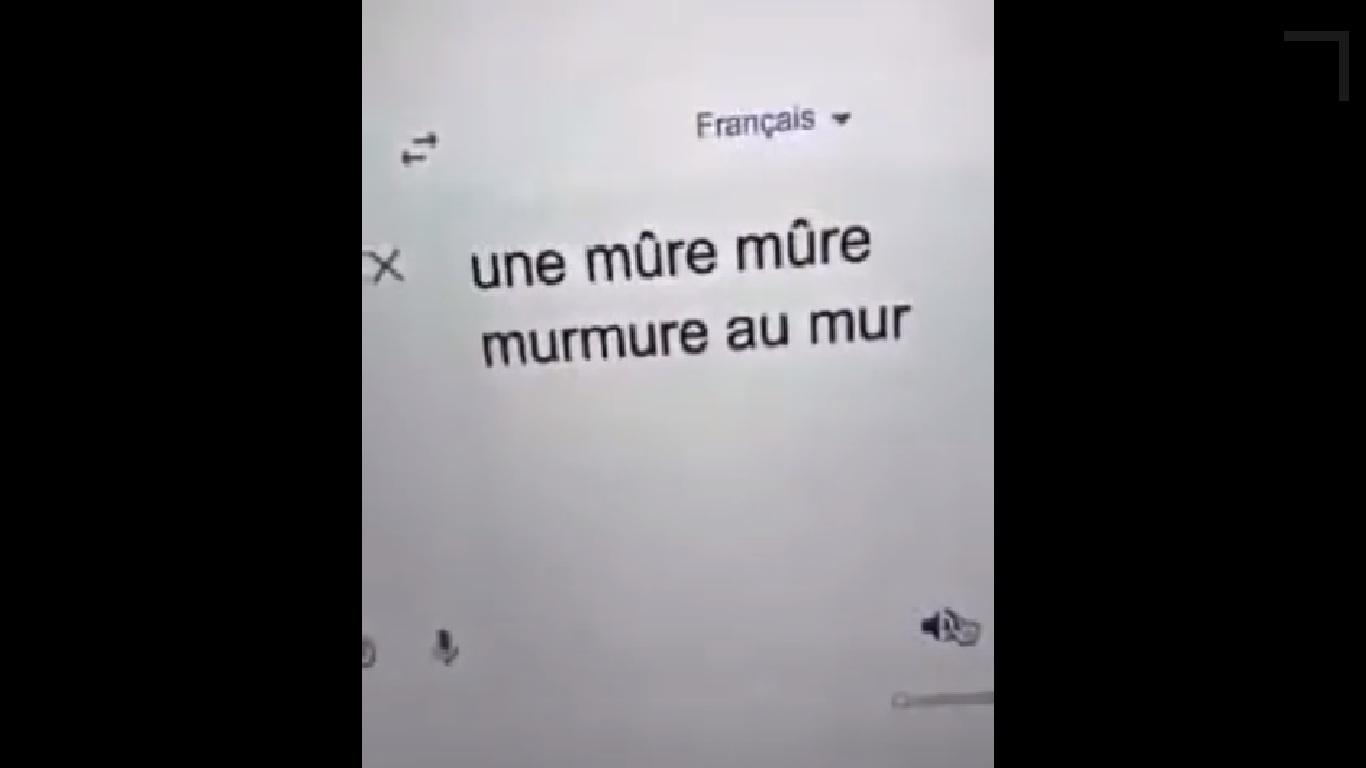Quand vous apprenez le français en utilisant google traduction