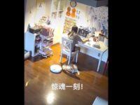 Un robot aspirateur attaque un chien